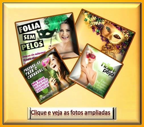 http://noticiasdecajazeiras-claudiomar.blogspot.com.br/2015/01/carnaval-sem-pelos.html