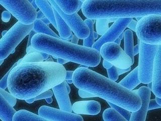 9 Penyakit Paling Memalukan Di Dunia [ www.Up2Det.com ]