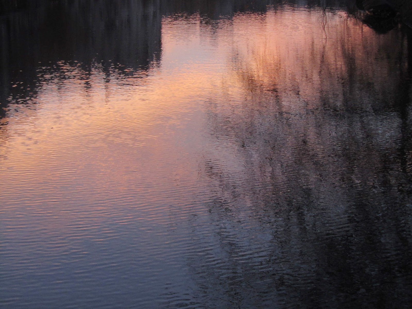 reflection of a pink sunrise in a canal
