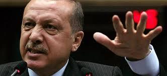 erdogan bes parmak