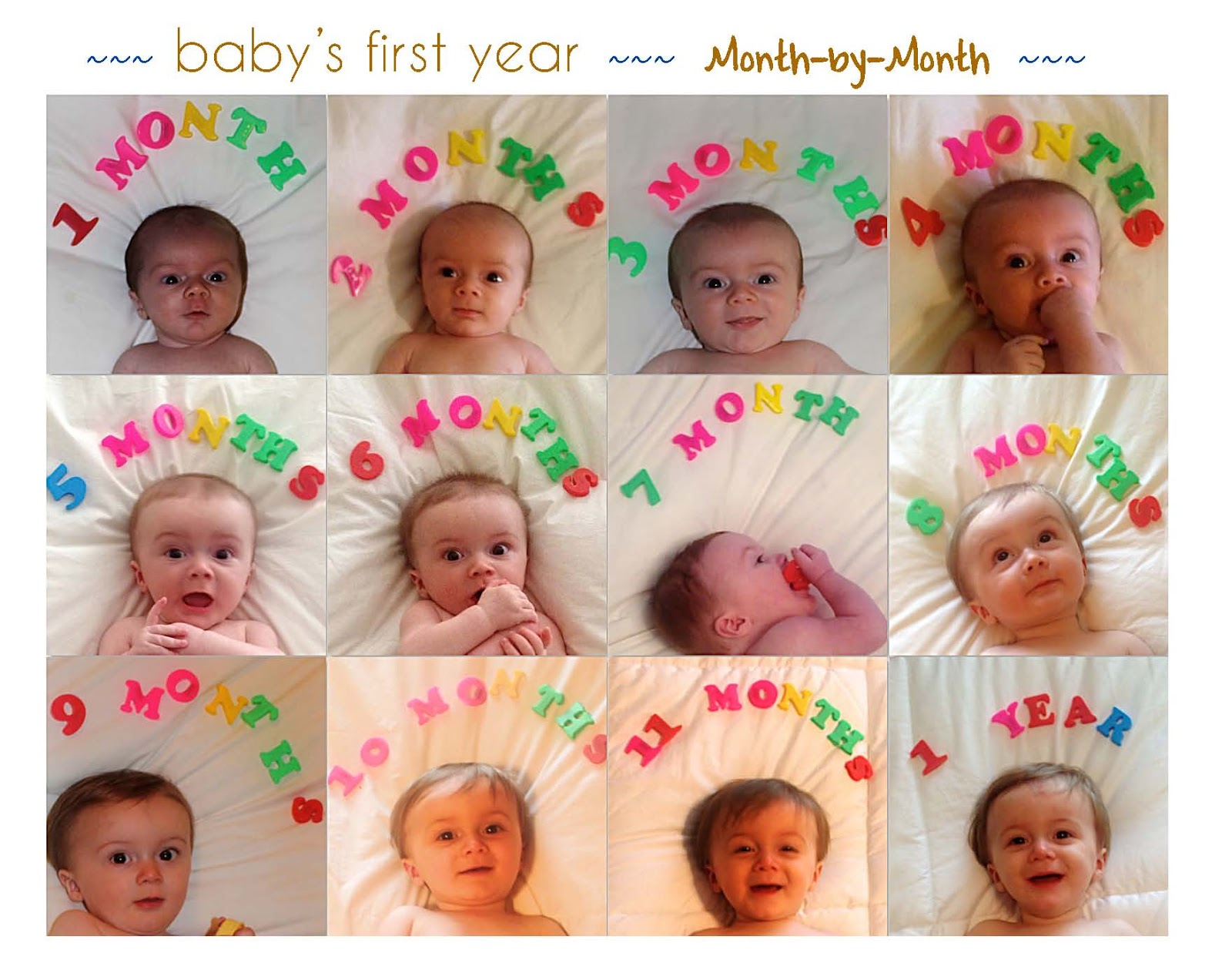 joie de vivre.: Baby's first year: Monthly photo collage