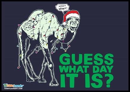 http://www.shareasale.com/r.cfm?u=648884&b=239068&m=27979&afftrack=&urllink=www%2Etshirtlaundry%2Ecom%2Fchristmas%2Dhump%2Dday%2Dtshirt%2Ehtml