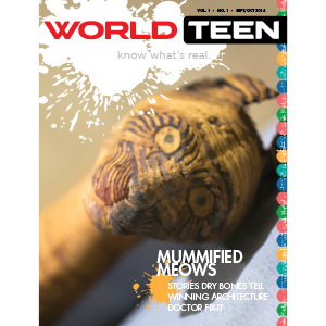 World Teens