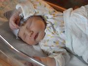 baby sloth: May 2012