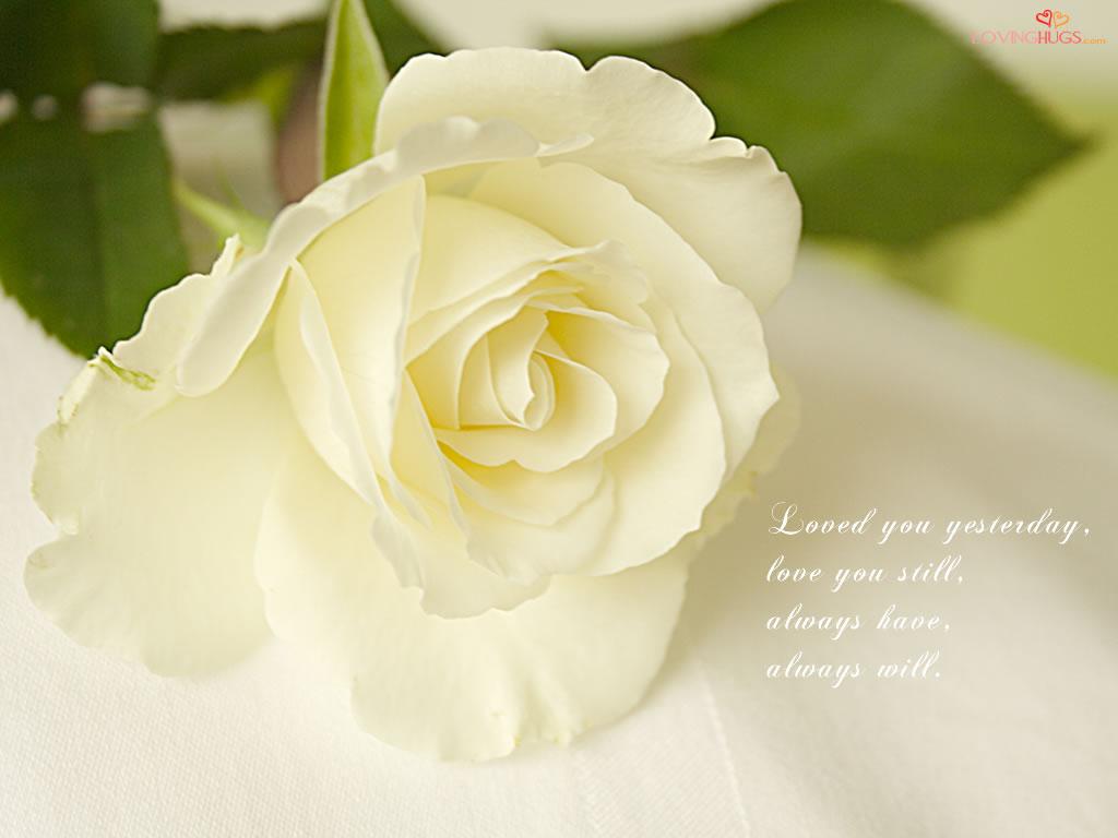 http://3.bp.blogspot.com/-h1YwvO_eC5U/TzKzpKL-yYI/AAAAAAAAA_4/UeOzSji15Gw/s1600/love-wallpaper33.jpg