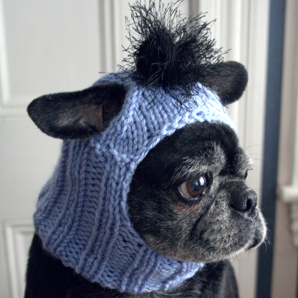 Pug Dog Knitting Pattern Image collections - knitting patterns free ...