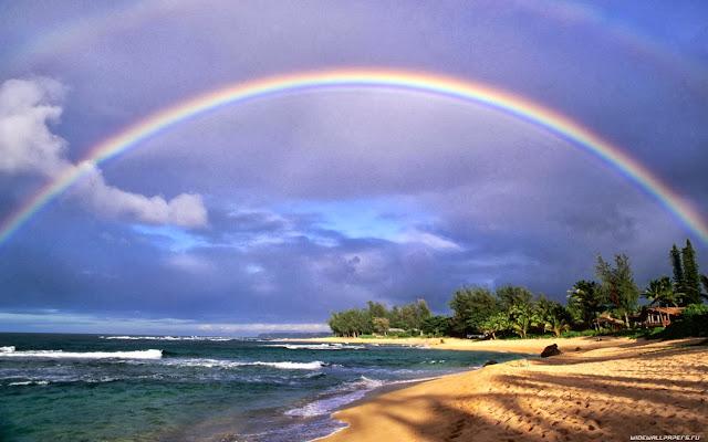 Beautiful rainbow on the beach wallpaper