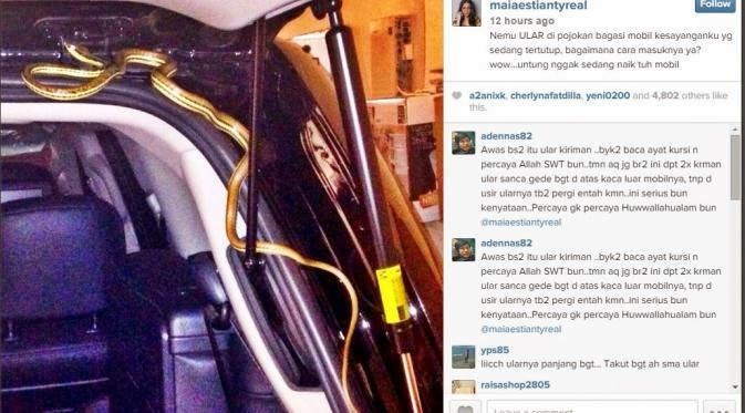 Ada Ular dalam Mobil, Maia Estianty Jadi Sasaran santet?