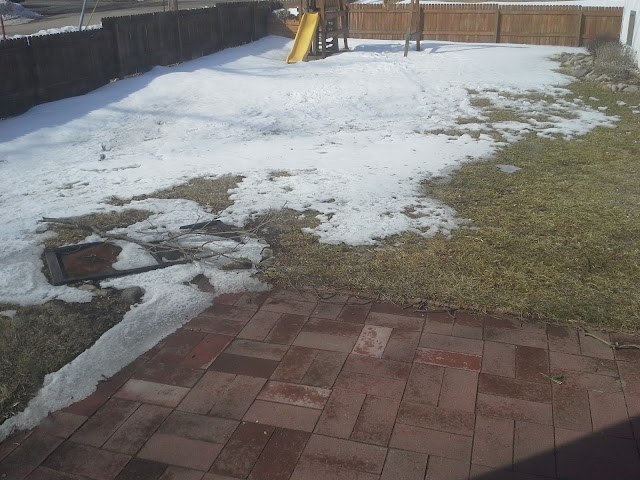 snow on ground in Minnesota - March 25, 2013