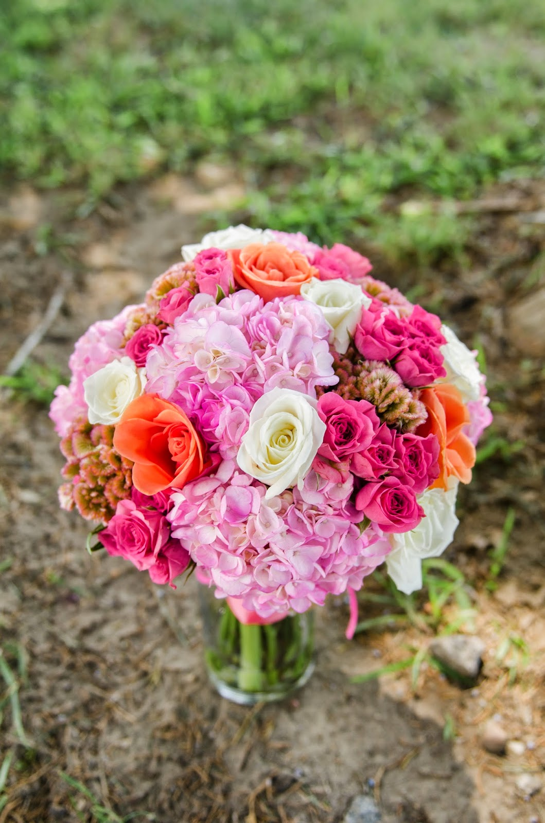Crystal Reyns Photography: Highlighting Faithful Flowers l Louisa ...