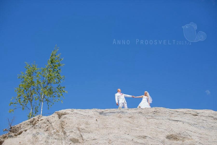 pulmafoto-pruutpaar-sinine-taevas