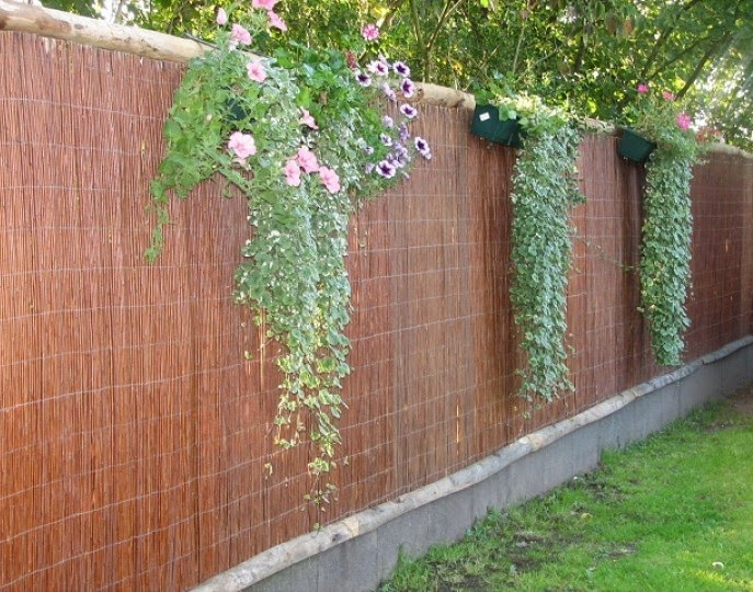 Vannerie et Osier : Invitez l\'osier dans votre jardin