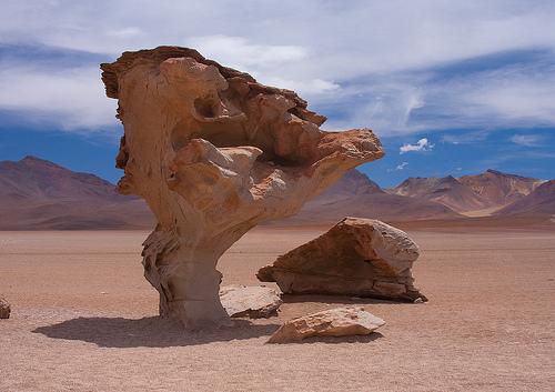 Árvore de Pedra da Bolívia