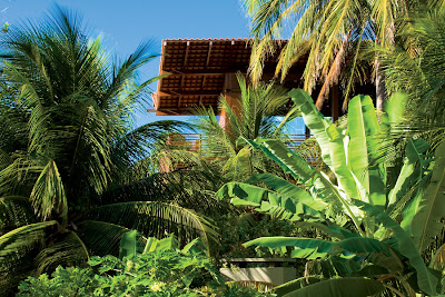 Casa Tropical 19