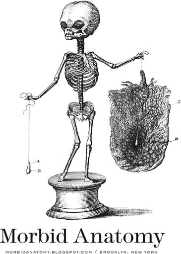 Morbid Anatomy: October 2012