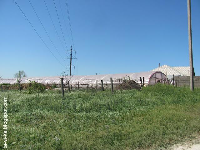 село Тополи - теплицы