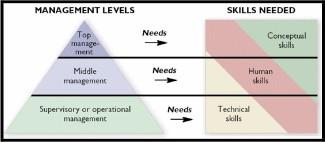 technical skills human skills and conceptual skills