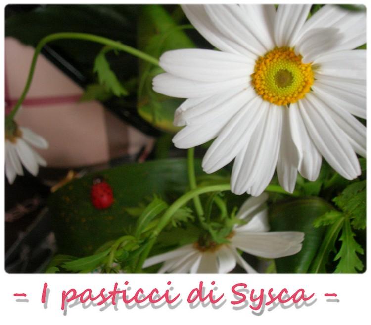I pasticci di Sysca