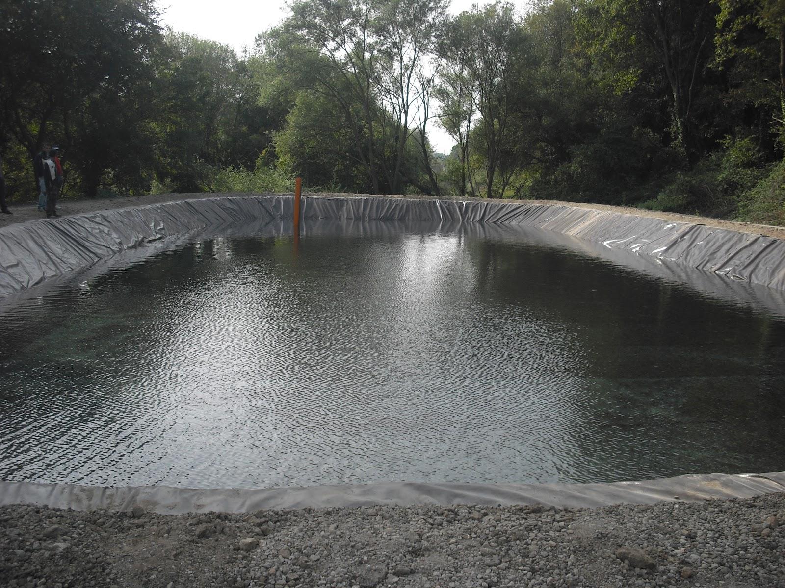 Domenico caruso impermeabilizzazione laghetto sportivo for Teli laghetto