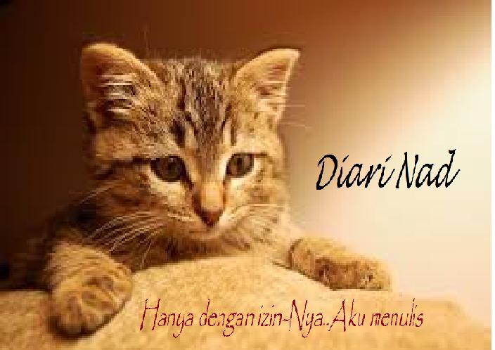^^Diari Nad^^