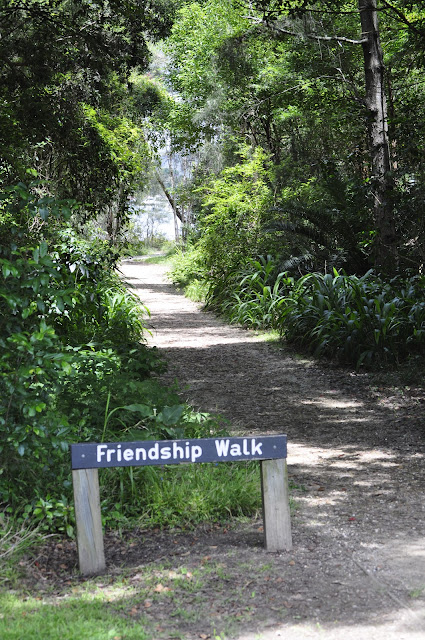 Friendship Walk, East Gosford, NSW