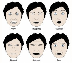 Casually come facial expressiveness in cultures really. All