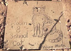 Room 8 (1947–1968) was a neighborhood cat