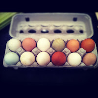 Local Eggs - Out of the Box Collective