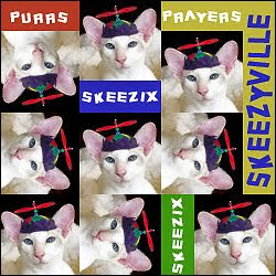 Skeezix needs our purrs and prayers
