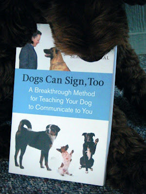 Alfie's nosing a book titled Dogs Can Sign, Too