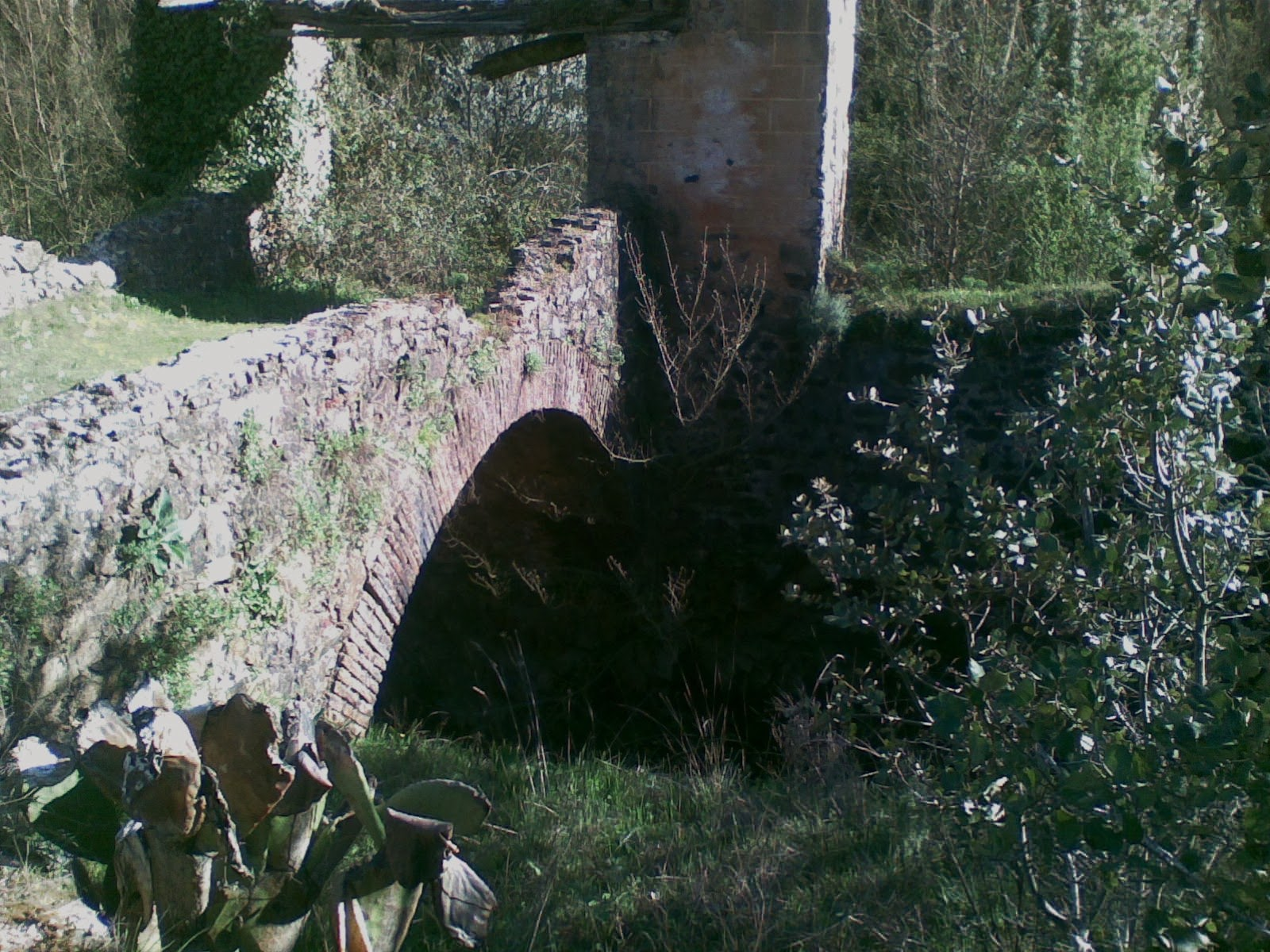 Puente de entrada   P.Jado