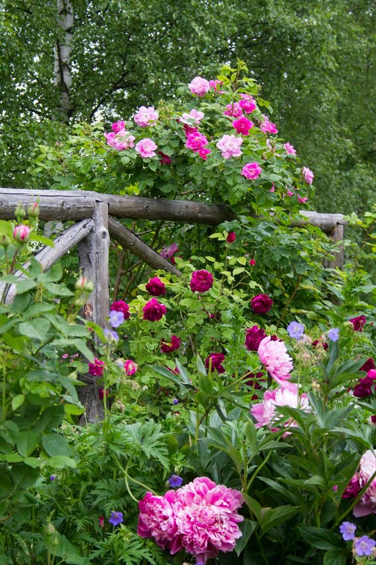 Rustic Flower Garden Fence
