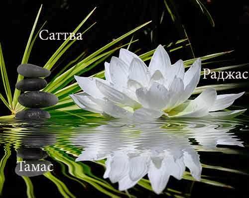 Три гуны или первичные свойства материальной природы