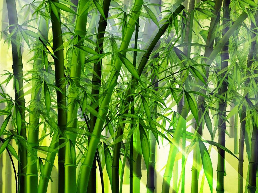 Bambu Dan Filosofi Hidup