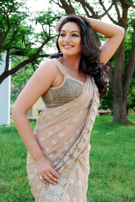 film model ragini dwivedi in saree actress pics