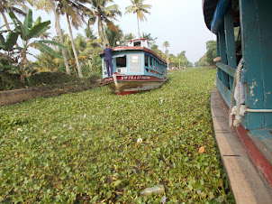 Two Way Passenger boat traffic  in backwater channels of Kerala.