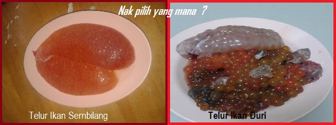 telur ikan duri, telur ikan goreng