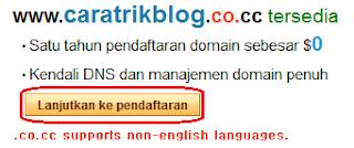 Cara Setup Blogspot ke Domain co.cc