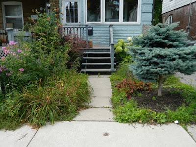 Leslieville front garden cleanup before Paul Jung Gardening Services Toronto