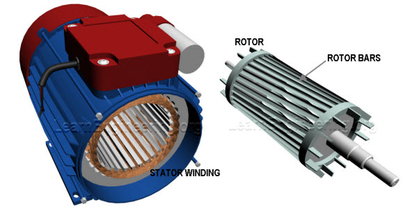 Difference between synchronous motor and induction motor for Three phase asynchronous motor