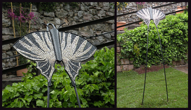 Farfalla Zebra