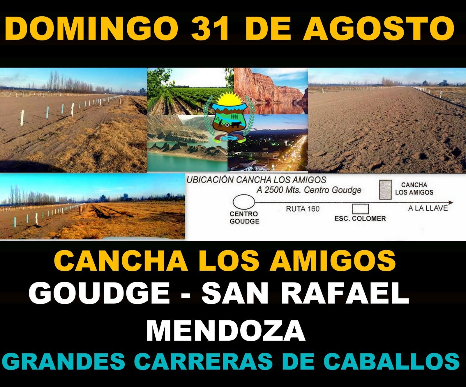 http://turfdelapatagonia.blogspot.com.ar/2014/08/3108-adelantos-de-carreras-de-caballos.html
