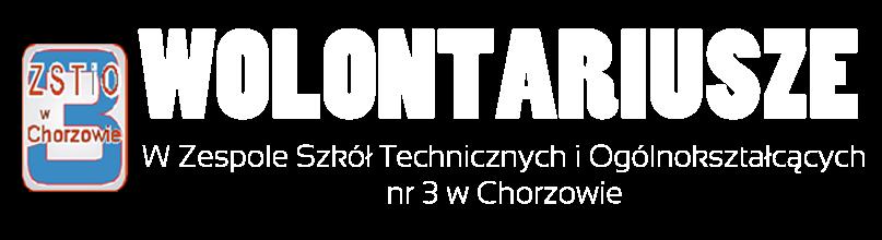 Wolontariusze w ZSTiO nr 3 w Chorzowie