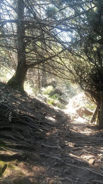 la-cumbrecita-boschi