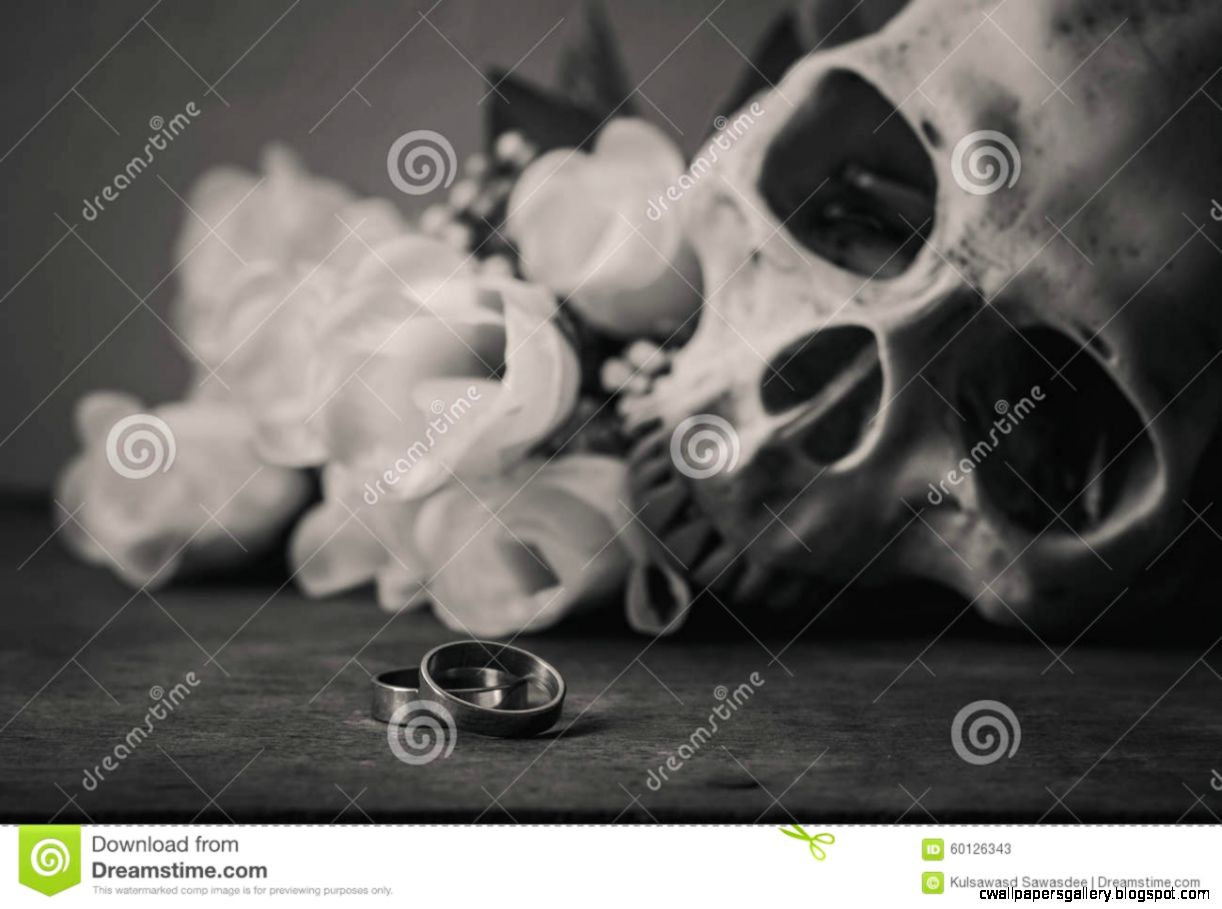 Black And White Photography With Rings Human Skull And Roses On