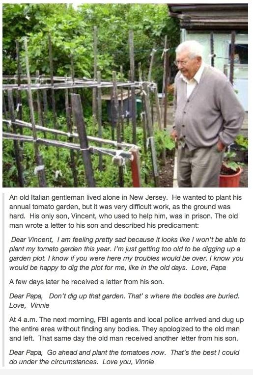 Height of Wisdom, funny, old man, picture