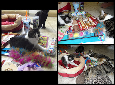 Anakin, George, Pixie, Trixie & Zoe with Presents!