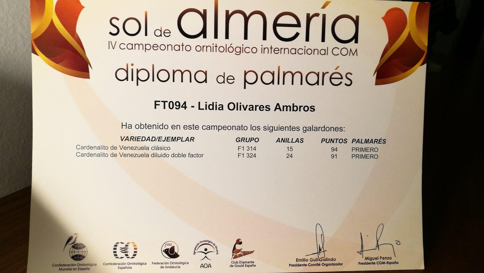2018-INTERNAC. SOL DE ALMERIA