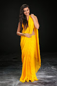 Neelam Upadhyay photos in Yellow saree from Action-thumbnail-9