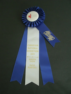 Second prize ribbon Canadian National Exhibition 2011 patio planter competition by garden muses: a Toronto gardening blog